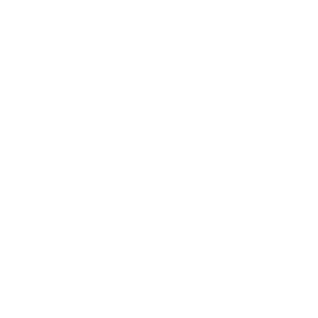 Wild Bride Festival 2019 - Logo